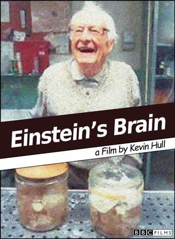 Relics: Einstein's Brain Poster