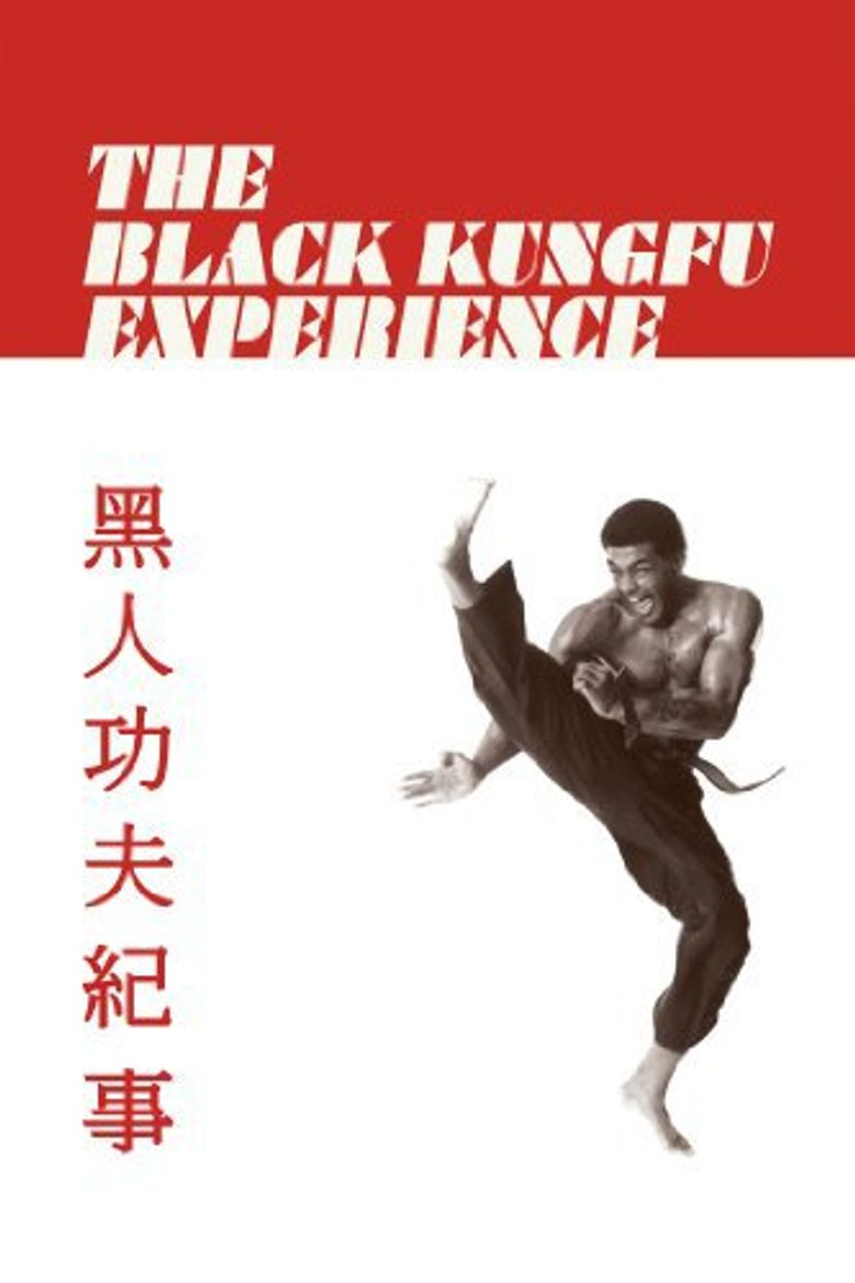 The Black Kung Fu Experience Poster
