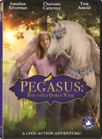 Pegasus: Pony With a Broken Wing Poster