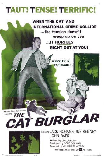 The Cat Burglar Poster