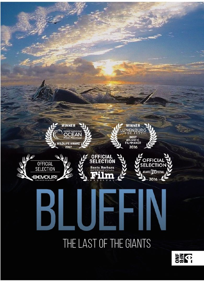 Bluefin (2018) - Watch on Prime Video, Hulu, Tubi TV, and Streaming