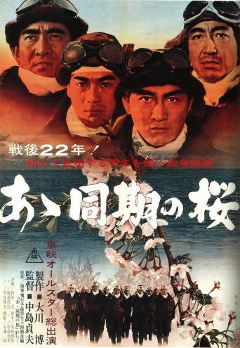 Diaries of the Kamikaze Poster