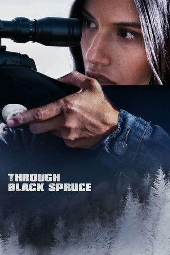 Through Black Spruce Poster