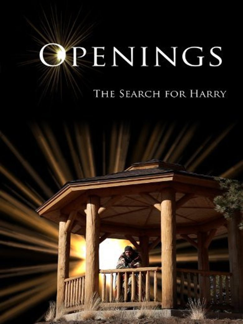Openings: The Search for Harry Poster