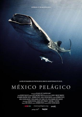 México Pelágico Poster