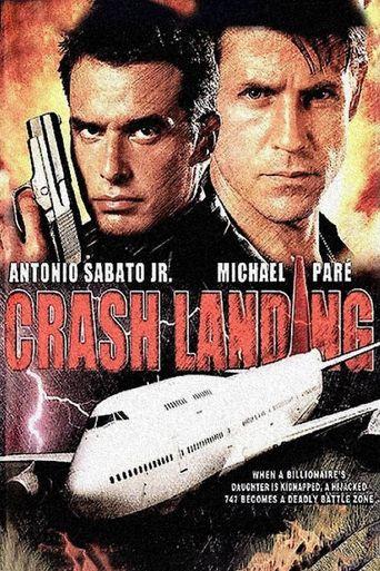 Crash Landing Poster
