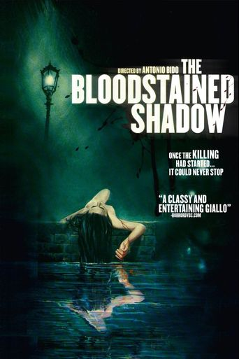 The Bloodstained Shadow Poster
