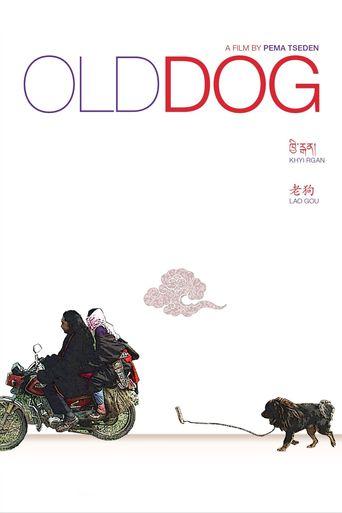 Old Dog Poster