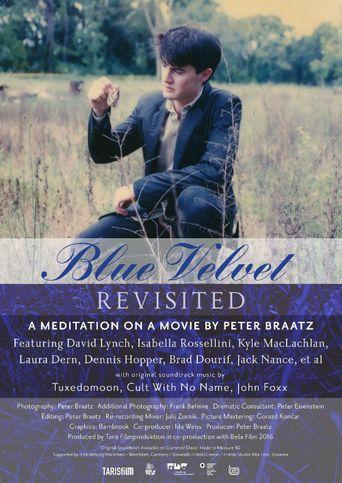 Blue Velvet Revisited Poster