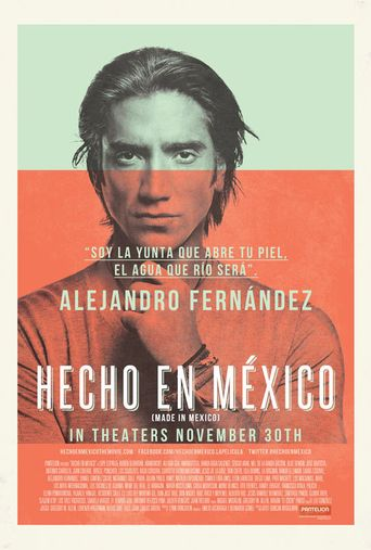 Made in Mexico Poster