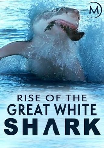 Rise Of The Great White Shark Poster