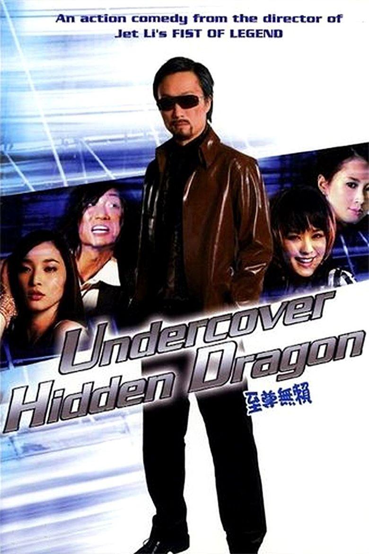 Undercover Hidden Dragon Poster