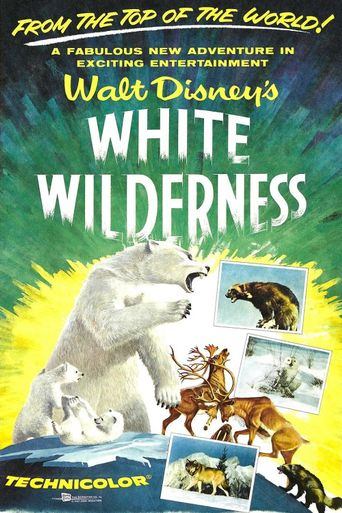White Wilderness Poster