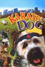 Watch The Karate Dog