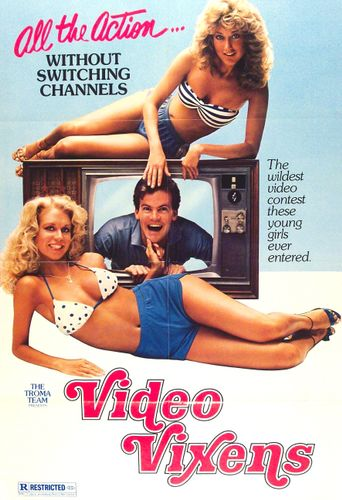 Video Vixens Poster