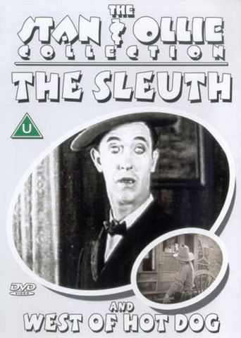 The Sleuth Poster