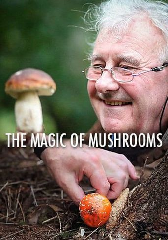 The Magic Of Mushrooms Poster