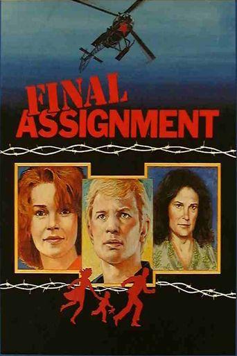 Final Assignment Poster