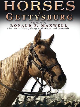 Horses of Gettysburg Poster