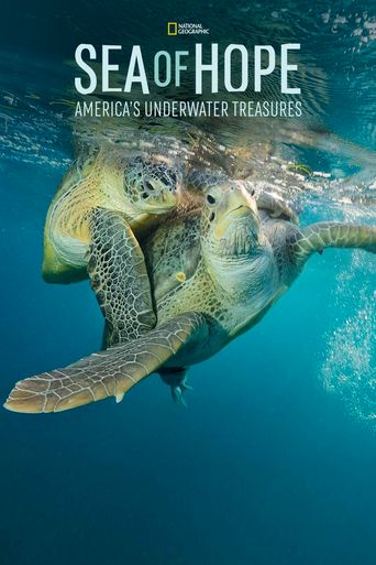 Sea of Hope: America's Underwater Treasures Poster
