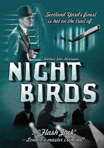 Night Birds Poster