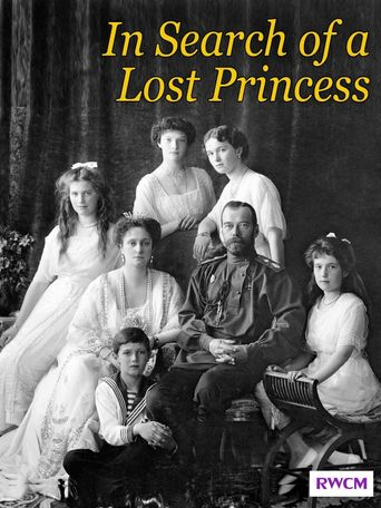 In Search of a Lost Princess Poster