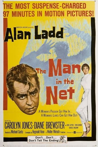 The Man in the Net Poster