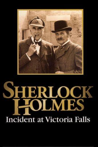 Sherlock Holmes: Incident at Victoria Falls Poster