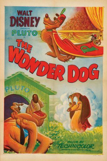 Wonder Dog Poster