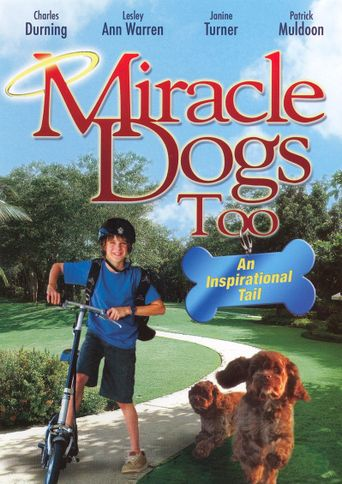 Miracle Dogs Too Poster