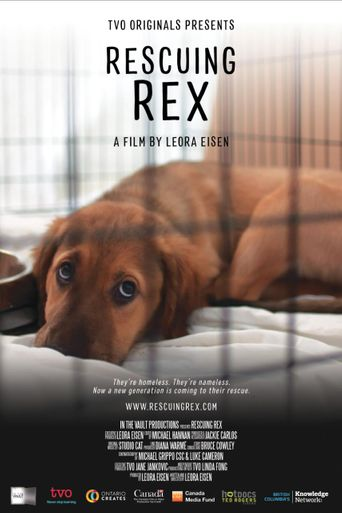 Rescuing Rex Poster
