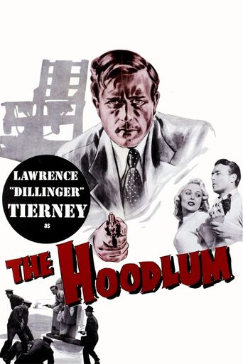 The Hoodlum Poster