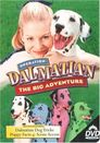 Watch Operation Dalmatian: The Big Adventure
