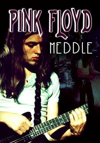 Rock Milestones: Pink Floyd: Meddle Poster