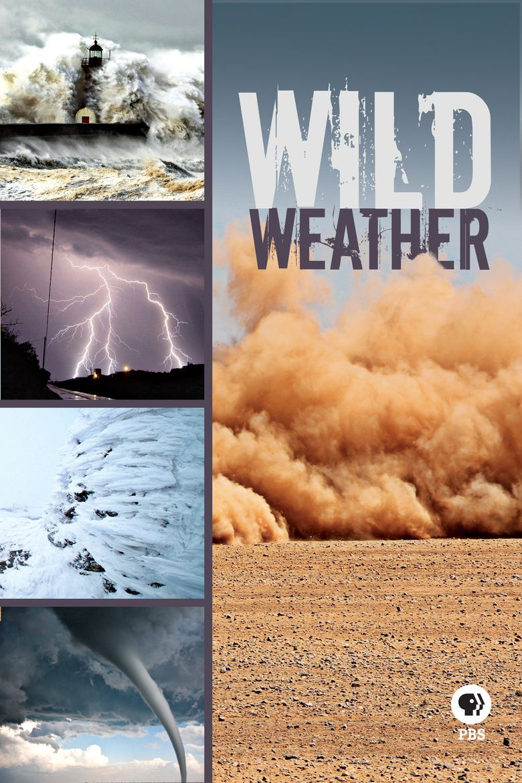 Wild Weather Poster