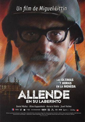 Allende en su laberinto Poster