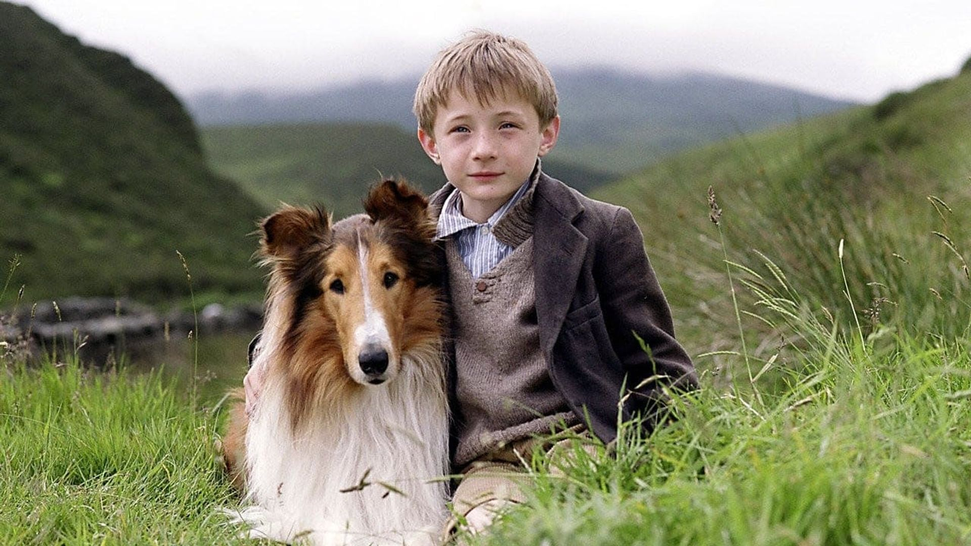 Image result for lassie 2006