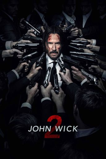 Watch John Wick: Chapter 2