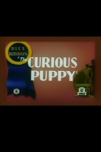 The Curious Puppy Poster