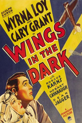 Wings in the Dark Poster