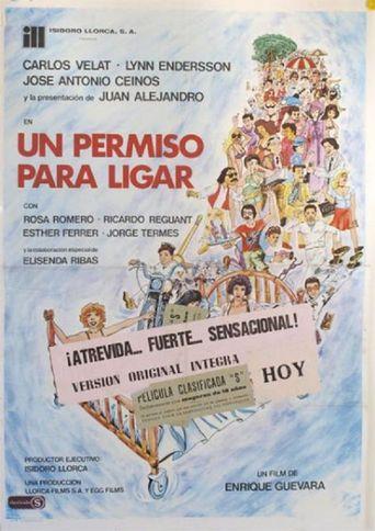 Un permiso para ligar Poster