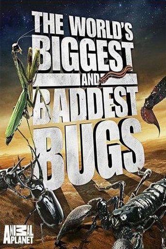 The World's Biggest and Baddest Bugs Poster