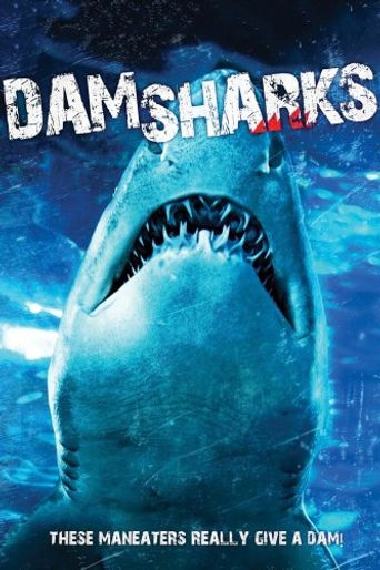 Dam Sharks! Poster