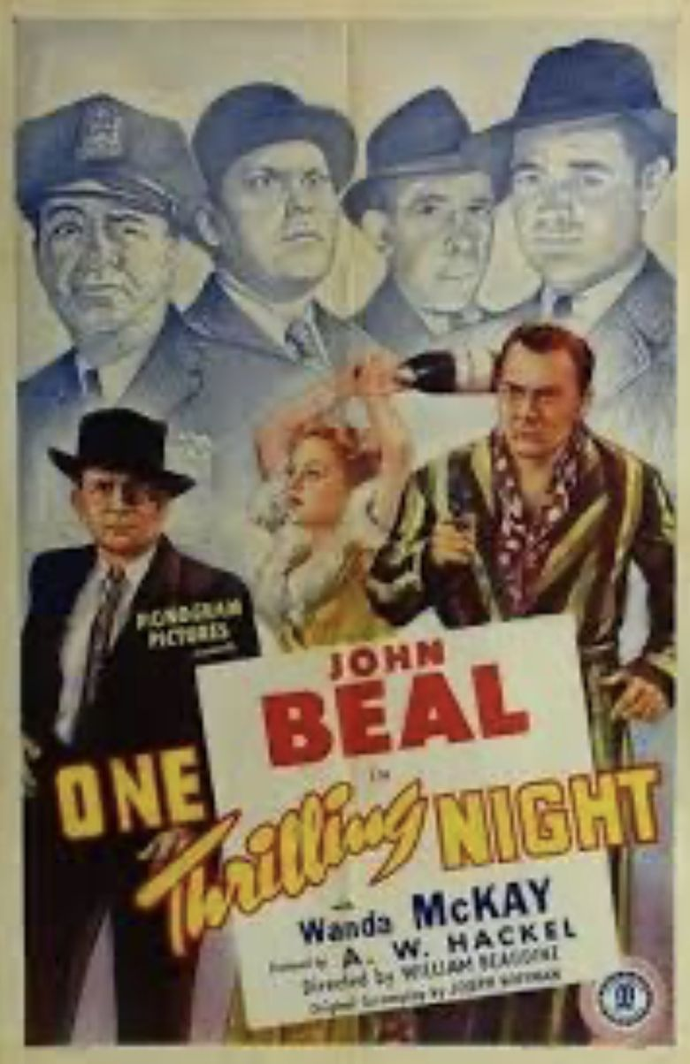 One Thrilling Night Poster