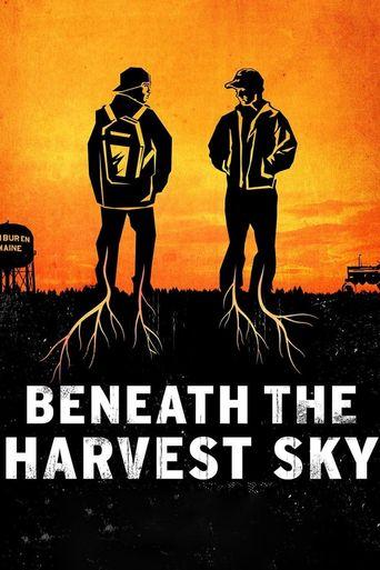 Beneath the Harvest Sky Poster