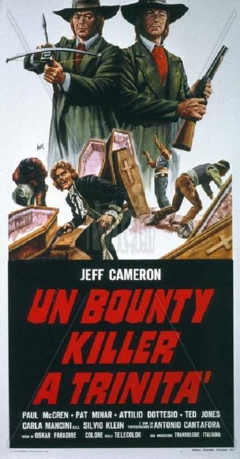 Bounty Hunter in Trinity Poster