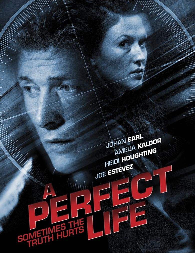 A Perfect Life Poster