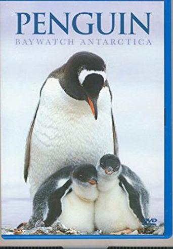 Penguin Baywatch Antarctica Poster
