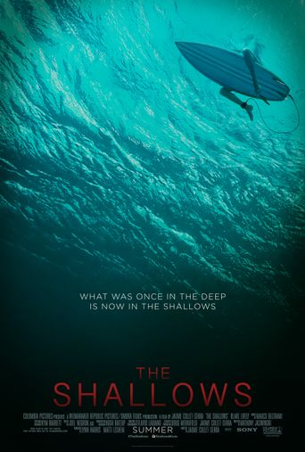 Watch The Shallows