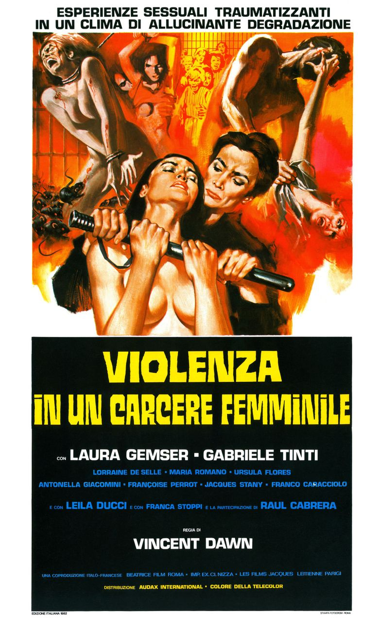 Violence in a Women's Prison Poster